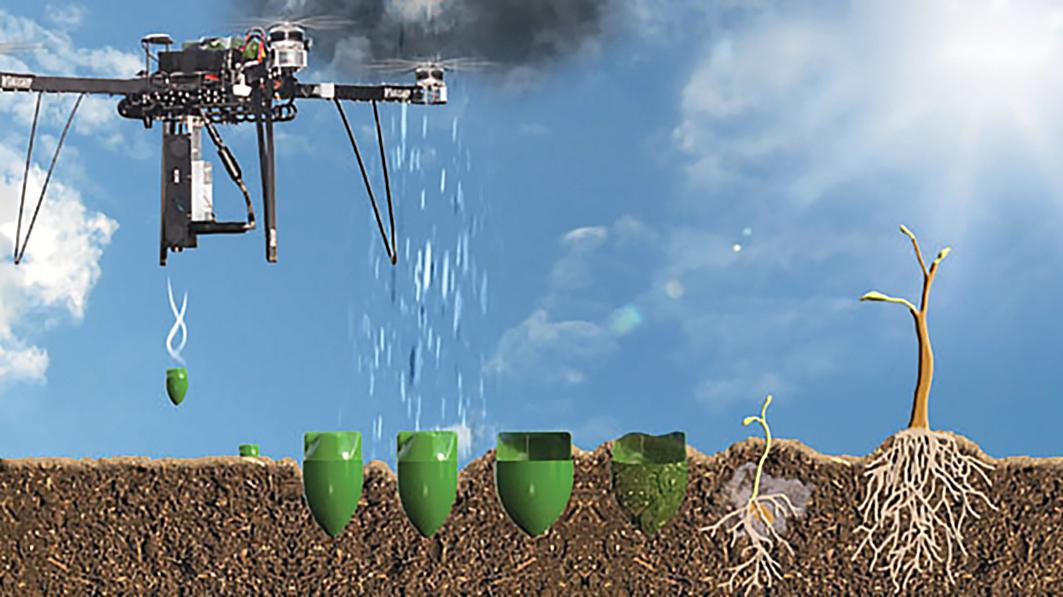 Plantarea de copaci din aer